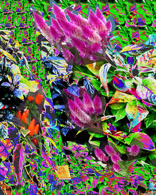 Digitalart Mixed Media - Abstract Flower Floral Photography And Digital Painting Combination Mixed Media By Navinjoshi     by Navin Joshi