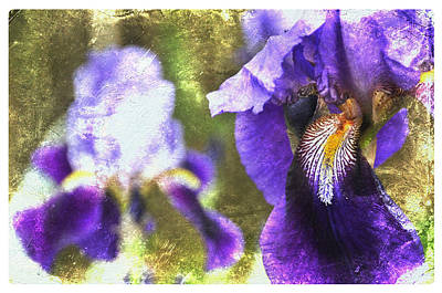 Photograph - Abstract Purple Haze by Davina Washington