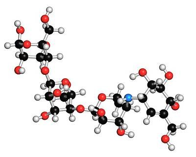 Molecule Photograph - Acarbose Diabetes Drug Molecule by Molekuul