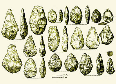 Biface Photograph - Acheulean Hand-axes, Lower Paleolithic by Science Source