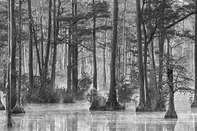 Photograph - Adams Mill Pond 37 Bw by Jim Dollar