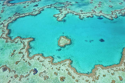 Whitsunday Photograph - Aerial View Of Heart Reef, Part by Peter Adams