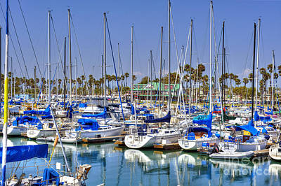 Photograph - Alamitos Bay Ca Marina by David Zanzinger