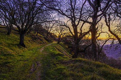 Photograph - Alamo Hills by PhotoWorks By Don Hoekwater
