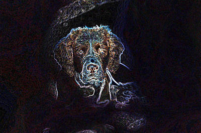 Generative Photograph - Bow Wow by Dave Byrne