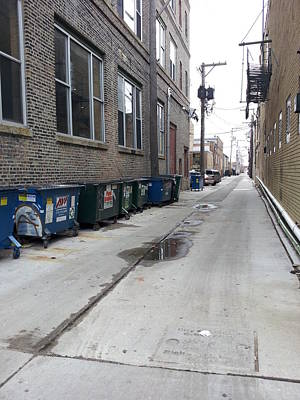 Photograph - Alley 12 by Zac AlleyWalker Lowing