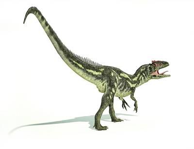 Prehistorical Photograph - Allosaurus Dinosaur by Leonello Calvetti