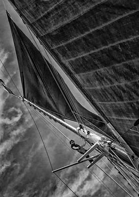Photograph - Aloft by Fred LeBlanc