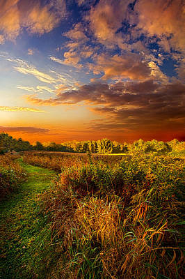 Along The Way Art Print by Phil Koch