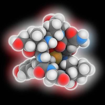 Toxin Photograph - Alpha-amanitin Toxin Molecule by Laguna Design
