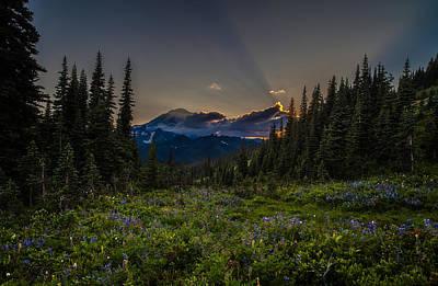 Northwest Photograph - Alpine Meadow Sunrays by Mike Reid