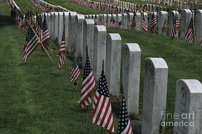 Photograph - American Flags Honoring Our Soldiers by Jim Corwin