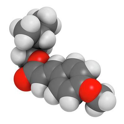 Amiloxate Sunscreen Molecule Art Print by Molekuul