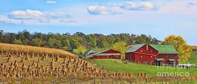 Amish Farms Photograph - Amish Farm by Jack Schultz