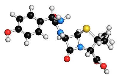Molecule Photograph - Amoxicillin Antibiotic Drug Molecule by Molekuul