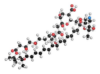 Amphotericin B Antifungal Drug Molecule Art Print
