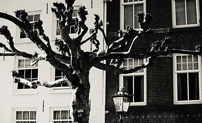 Photograph - Amsterdam by Jenny Rainbow