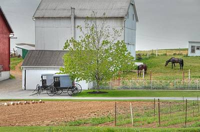 Photograph - An Amish Farm by Dyle   Warren