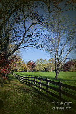Photograph - An Autumn Stroll by Joe McCormack Jr