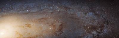Andromeda Galaxy M31 Art Print