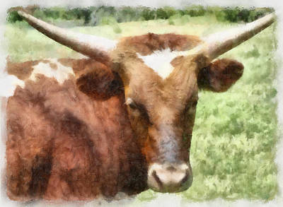 Painting - animals - cows - Longhorn View  by Ann Powell