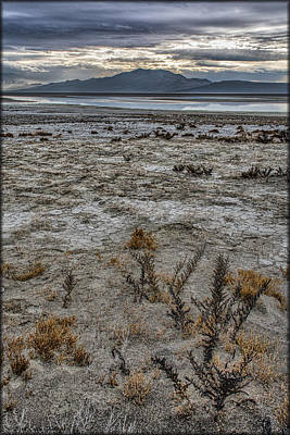 Photograph - Antelope Island by Erika Fawcett
