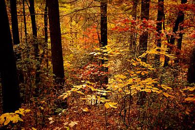 Appalachian Fall Art Print