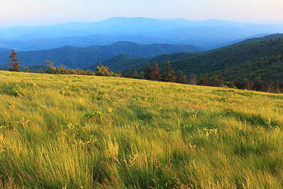 Photograph - Appalachian Trail Round Bald Roan Mountain by John Burk