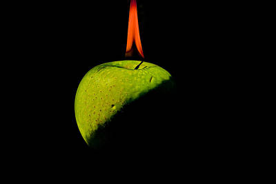 Photograph - Apple On Fire by Peter Lakomy