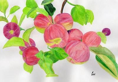 Apples Art Print by Bav Patel
