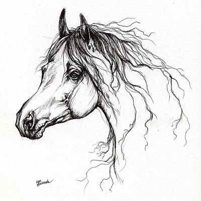 Arabian Horse Drawing 37 Original by Angel  Tarantella