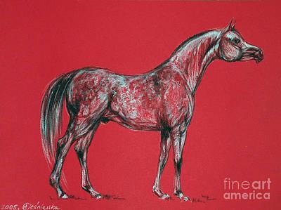 Arabian Horse Drawing Art Print