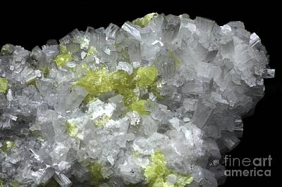 Fibrous Crystals Photograph - Aragonite Crystals With Sulphur by Dirk Wiersma