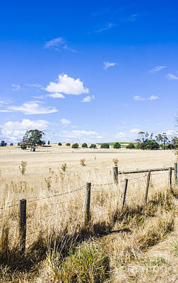 Pasture Scenes Photograph - Arid Agricultural Landscape In South Tasmania by Jorgo Photography - Wall Art Gallery