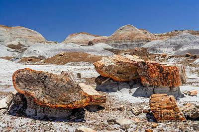 Cavern Digital Art - Arizona Petrified Forest National Park by Bob and Nadine Johnston