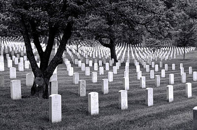 Photograph - Arlington National Cemetery by Allen Beatty