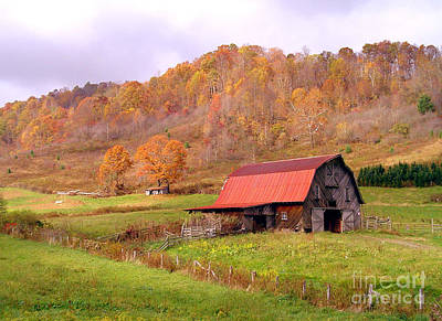 Photograph - Ashe County Barn by Annlynn Ward