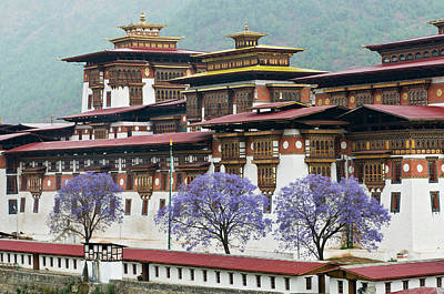 Bhutan Photograph - Asia, Bhutan Exterior View Of Punakha by Jaynes Gallery