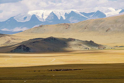 Altai Mountains Photograph - Asia, Western Mongolia, Khovd Province by Emily Wilson