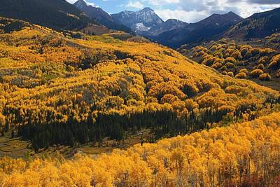River Photograph - Aspen Fall At Capitol Creek by Jetson Nguyen