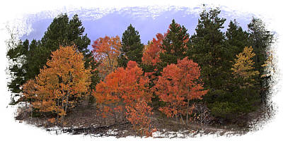 Photograph - Aspen Panorama by Judy Deist
