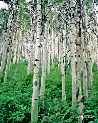 Photograph - Aspens by Jack McAward