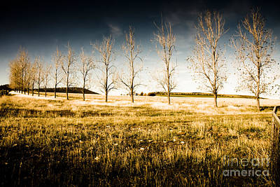 Atmospheric Vibrant And Dark Farming Landscape Art Print