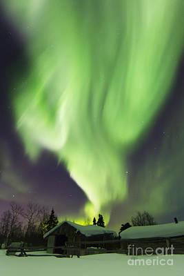 Photograph - Aurora Borealis And The Big Dipper by Joseph Bradley