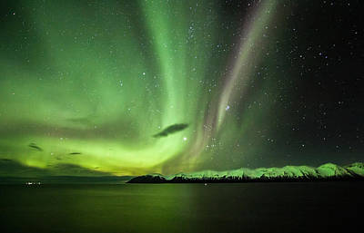 Photograph - Aurora Borealis by Frodi Brinks