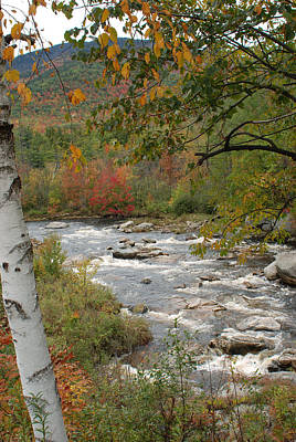 Photograph - Ausable River by David Seguin