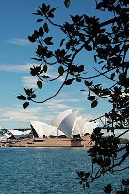 Australia, Sydney Art Print by Cindy Miller Hopkins