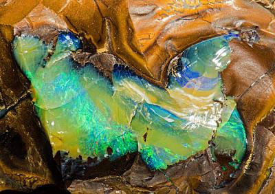 Photograph - Australian Opal by Millard H Sharp