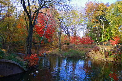 Autumn By The Creek Art Print