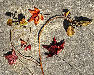 Autumn Original